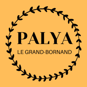 logo_palya